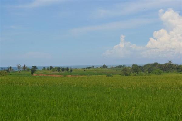 Tanah dijual di Tabanan Bali view pantai dan sawah – TJTB023