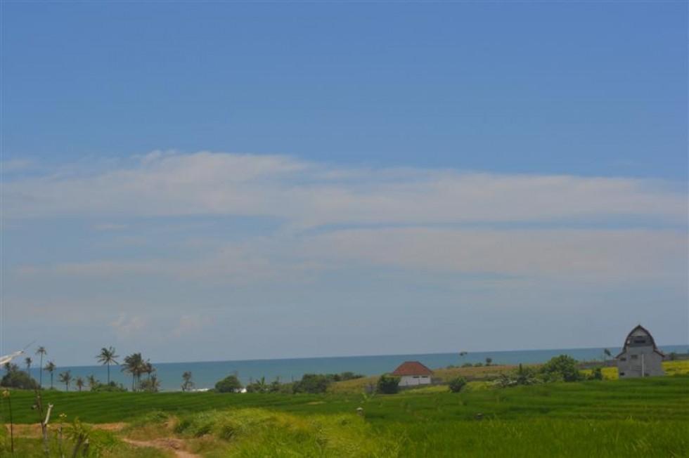 Tanah dijual di Tabanan Bali dengan pemandangan sawah – TJTB024