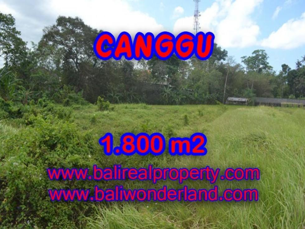 Jual tanah di Bali View sawah 1.800 m2 di Canggu Batu Bolong
