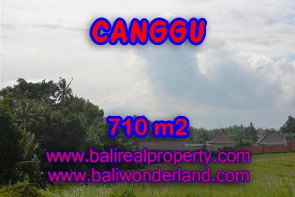 Jual tanah di Canggu 7,1 Are view sawah dan sungai di Canggu Brawa
