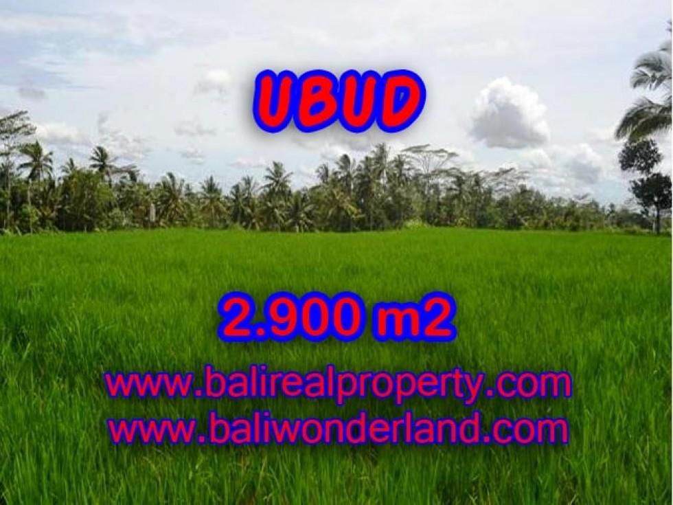 Tanah di Ubud dijual View sawah 29 Are di Ubud Payangan