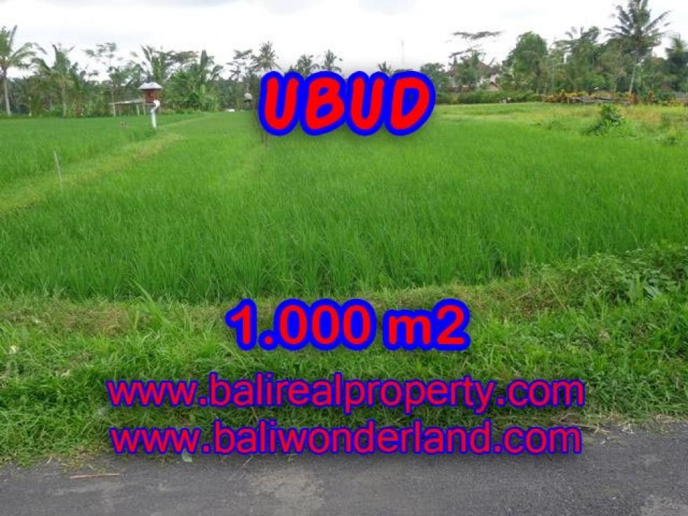 Tanah di Ubud dijual View sawah di Ubud Tampak siring