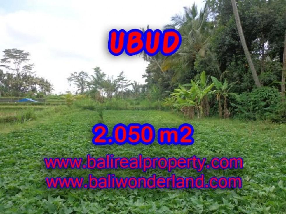 Tanah di Ubud dijual 20,5 Are di Ubud Pejeng