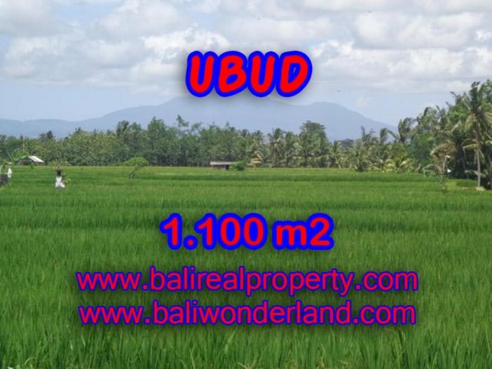 Tanah di Ubud dijual 1.100 m2 View sawah dan gunung di Dekat sentral Ubud Bali