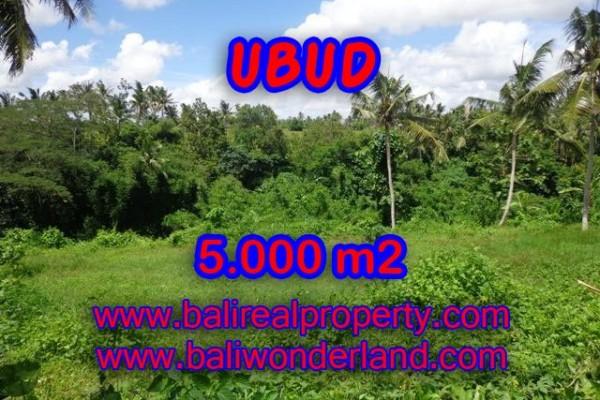 Tanah di Ubud Bali dijual View Sawah dan Sungai di Dekat sentral Ubud TJUB353