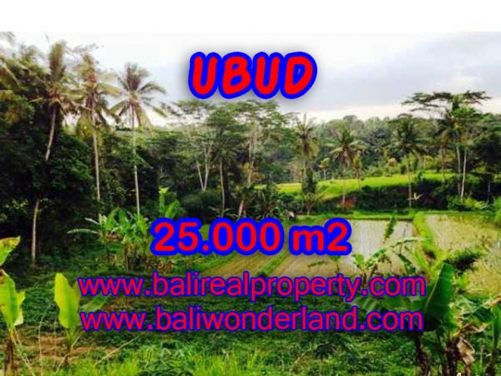 Tanah di Ubud dijual 250 Are View sawah, Tebing dan Sungai Ayung di Dekat sentral Ubud TJUB350