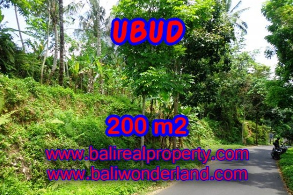 Tanah dijual di Ubud Bali 200 m2 View sawah dan hutan di Ubud Tegalalang