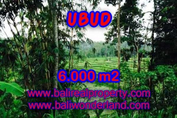 Tanah dijual di Bali 60 Are di Dekat sentral Ubud
