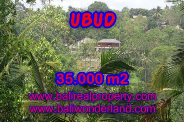 Tanah dijual di Bali 35.000 m2 View sawah, gunung, sungai dan hutan di Ubud Payangan