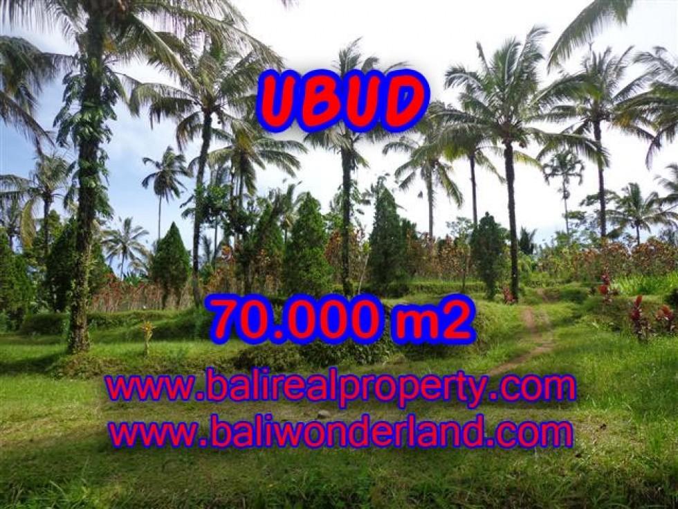 Jual tanah di Ubud Bali TJUB358
