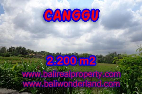 Tanah dijual di Canggu 2,200 m2 di Tumbak Bayuh