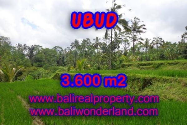 Tanah dijual di Ubud Bali View sawah, hutan dan sungai di Ubud Payangan