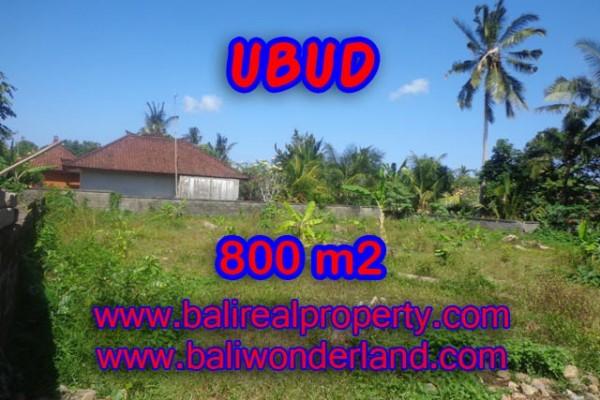 Tanah di Ubud dijual 8 Are di Dekat sentral Ubud
