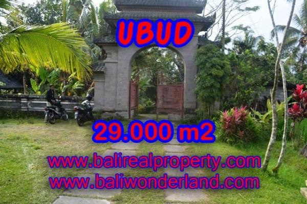 Jual Tanah di Ubud Bali View sungai, sawah dan tebing – TJUB336