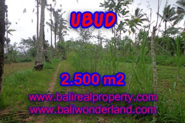 Tanah dijual di Ubud 2.500 m2 di Ubud Tegalalang