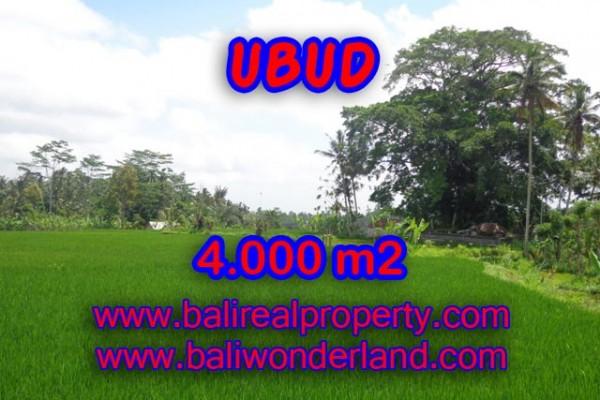 Tanah dijual di Ubud Bali view sawah dan gunung