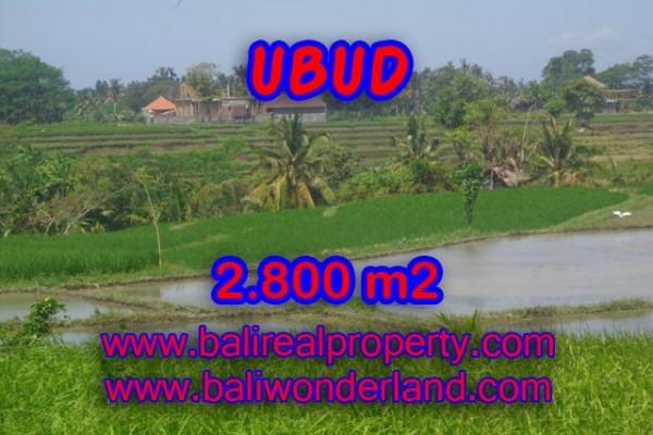 Tanah dijual di Ubud Bali 28 Are di Dekat sentral Ubud