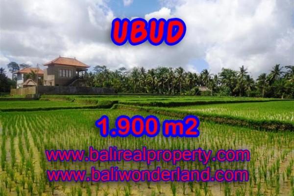 Jual tanah di Bali 1.900 m2 view sawah dekat sungai di Dekat sentral Ubud