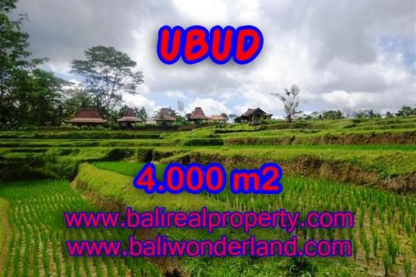 Tanah di Ubud Bali dijual 4.000 m2 view sawah dan sungai di Dekat sentral Ubud