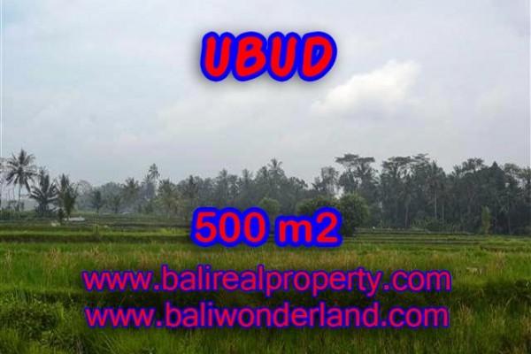 Investasi Properti di Bali – Murah ! Tanah di Ubud Bali Dijual TJUB363
