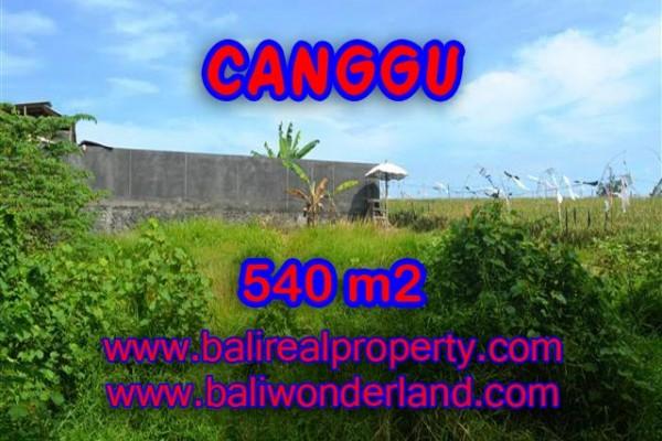 MURAH ! TANAH DI CANGGU BALI RP 4.350.000 / M2 – TJCG131 – INVESTASI PROPERTY DI BALI