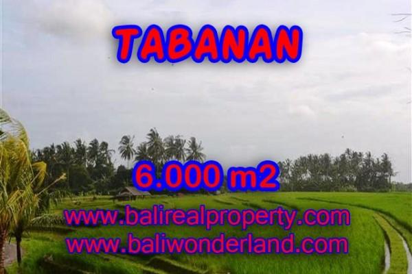 TANAH DI TABANAN MURAH TJTB093 – INVESTASI PROPERTY DI BALI