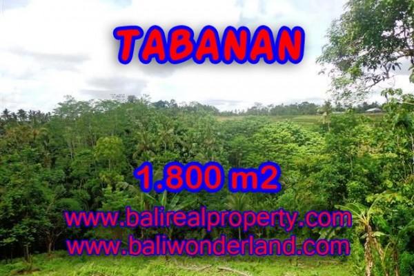INVESTASI PROPERTI DI BALI – DIJUAL TANAH MURAH DI TABANAN TJTB088