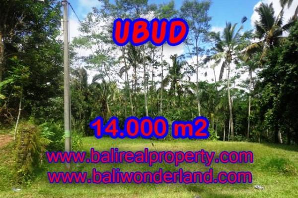 Tanah dijual di Ubud Bali 14.000 m2 view alami dekat sungai di Ubud Payangan