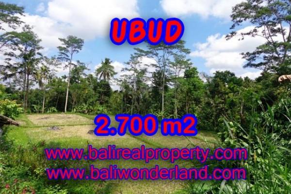 Tanah di Ubud dijual 2.700 m2 view sawah dan hutan di Ubud Tampak Siring