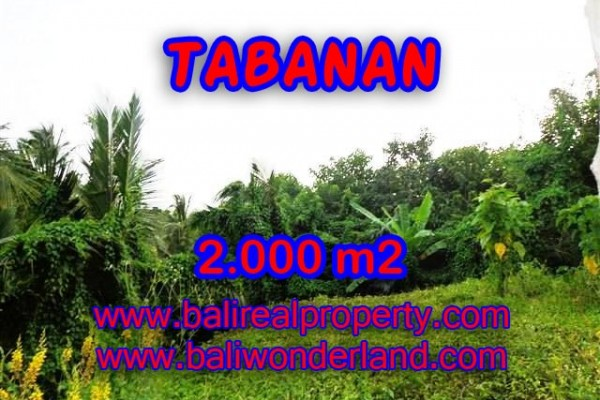 DIJUAL MURAH TANAH DI TABANAN TJTB099 – PELUANG INVESTASI PROPERTY DI BALI