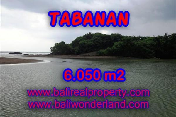 DIJUAL TANAH MURAH DI TABANAN TJTB098 – PELUANG INVESTASI PROPERTY DI BALI