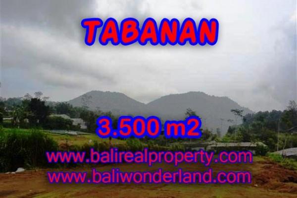 TANAH DIJUAL DI BALI, MURAH DI TABANAN HANYA RP 900.000 / M2
