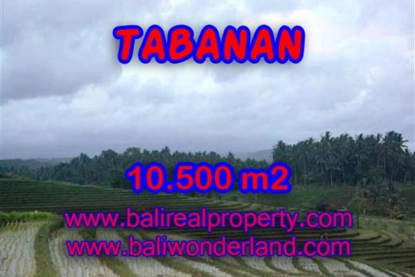 INVESTASI PROPERTI DI BALI – JUAL TANAH DI TABANAN BALI TJTB095