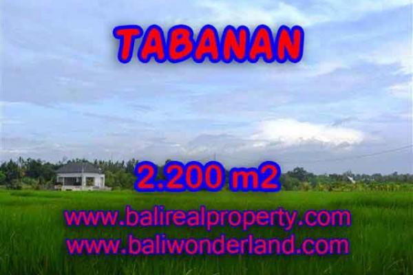 INVESTASI PROPERTI DI BALI – JUAL MURAH TANAH DI TABANAN BALI TJTB097