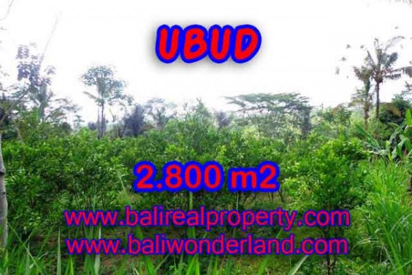 Jual Tanah murah di UBUD TJUB375 – investasi property di Bali