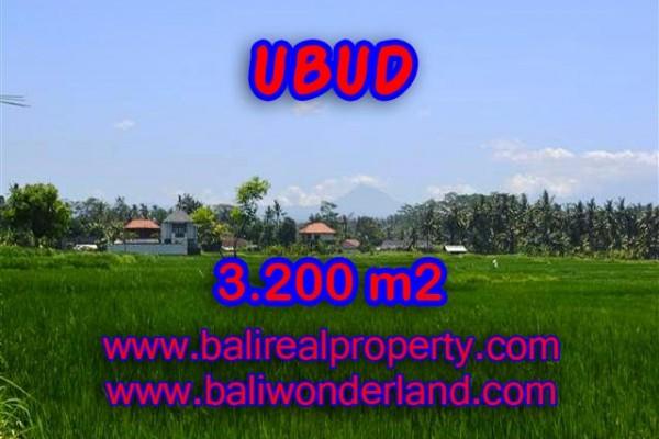 Murah ! Tanah di UBUD Bali Dijual TJUB385 – investasi property di Bali