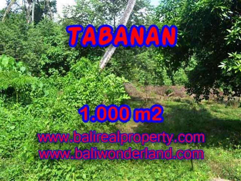 Tanah di TABANAN Bali Dijual murah TJTB114 – investasi property di Bali