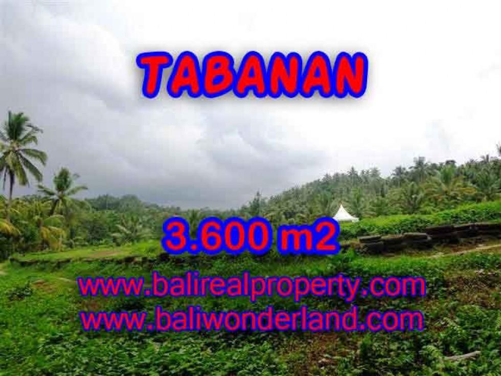 TANAH MURAH DI TABANAN TJTB117