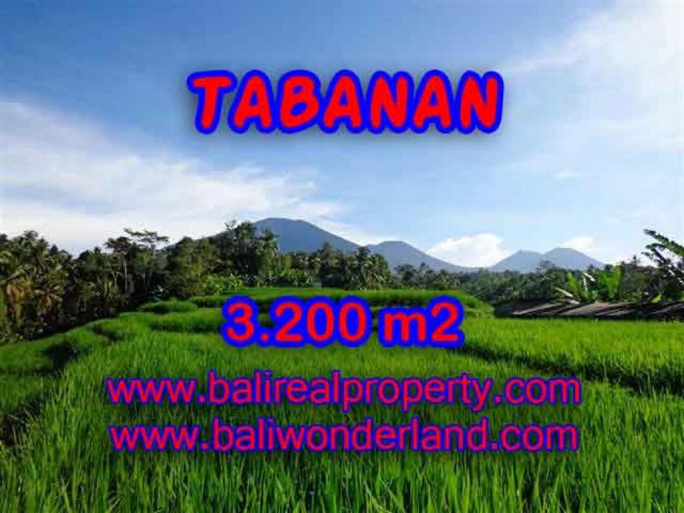 INVESTASI PROPERTI DI BALI – DIJUAL TANAH MURAH DI TABANAN TJTB118