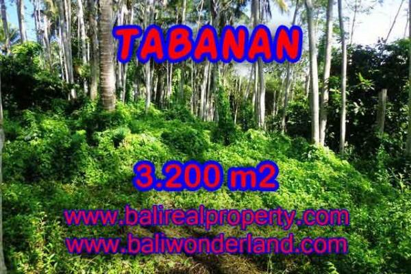 JUAL TANAH DI TABANAN BALI MURAH RP 450.000 / M2 – TJTB120