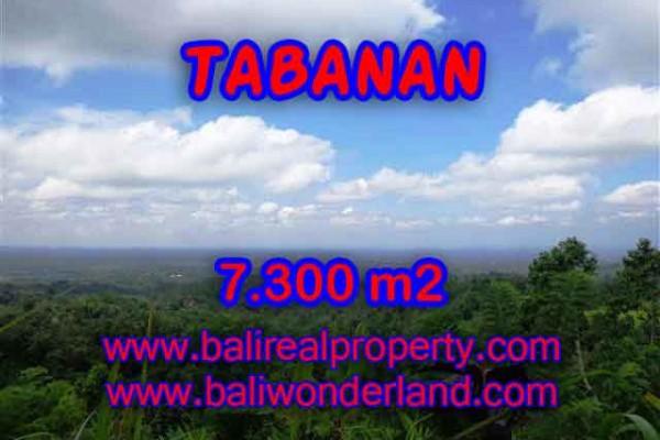 TANAH DI TABANAN MURAH TJTB123 – INVESTASI PROPERTY DI BALI
