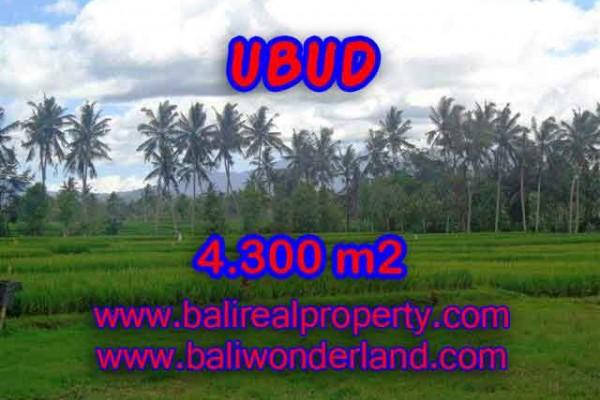 DIJUAL TANAH DI UBUD BALI TJUB370 – INVESTASI PROPERTY DI BALI