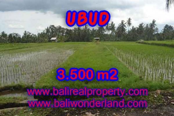 Investasi Properti di Bali – Murah ! Tanah di UBUD Bali Dijual TJUB395