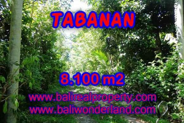 DIJUAL TANAH DI TABANAN BALI MURAH TJTB113 – INVESTASI PROPERTY DI BALI