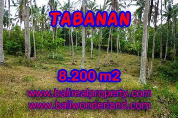 INVESTASI PROPERTI DI BALI – MURAH ! TANAH DIJUAL DI TABANAN TJTB142