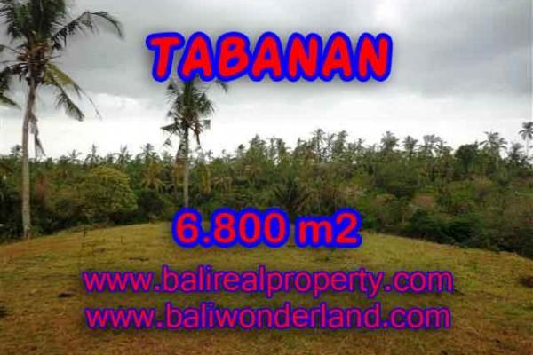 MURAH ! TANAH DI TABANAN BALI RP 320.000 / M2 – TJTB140 – INVESTASI PROPERTY DI BALI