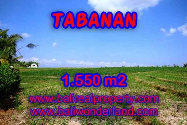 TANAH MURAH DI TABANAN BALI DIJUAL TJTB134 – INVESTASI PROPERTY DI BALI