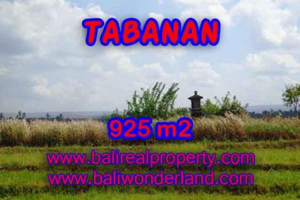 JUAL TANAH DI TABANAN BALI TJTB135 – PELUANG INVESTASI PROPERTY DI BALI