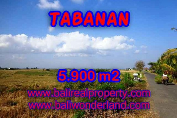 INVESTASI PROPERTI DI BALI – TANAH DI BALI, MURAH DI TABANAN DIJUAL RP 750.000 / M2 – TJTB131