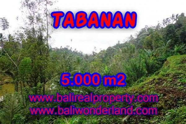 DIJUAL MURAH TANAH DI TABANAN BALI TJTB139 – PELUANG INVESTASI PROPERTY DI BALI